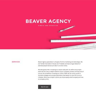 Web Design - Beaver Agency