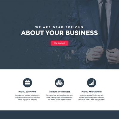 Web Design - Probiz